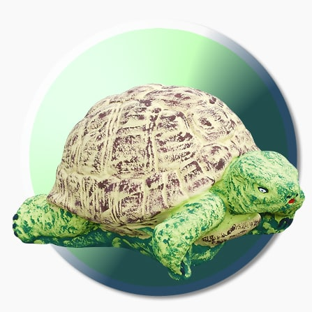 belle-deco-jardin-originale-tortue-AUBLET
